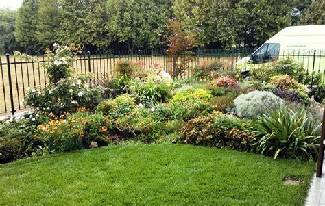 aiuola giardino progetto di creazione giardino con prato semicircolare con