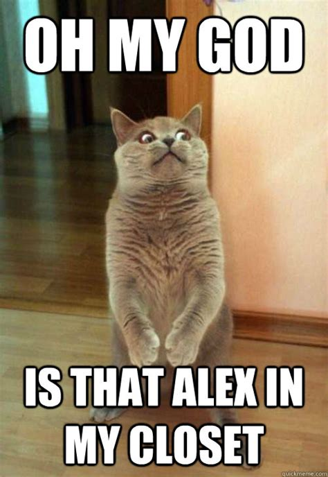 Alex Meme - oh my god is that alex cat meme cat planet cat planet