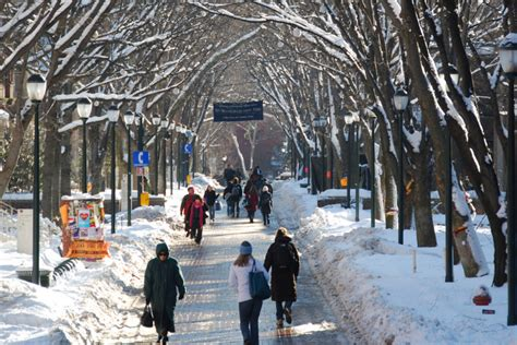 Mba Programs Closing by Closing Early Due To Weather Mba Program