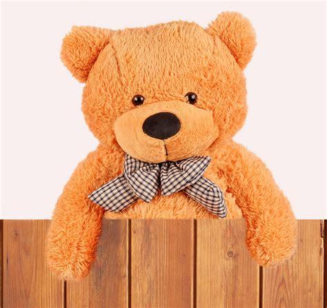 Boneka Teddy Pita Jumbo boneka teddy murah harga berpatutan kualiti yang memuaskan hati
