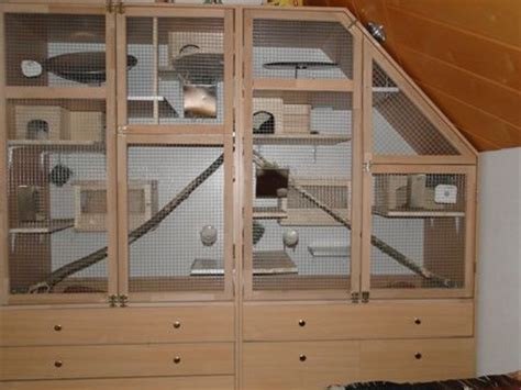 chinchilla house most awesome chinchilla cage ever pets are awesome pinterest guinea pigs sugar