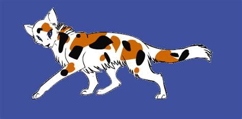 kitten maker design warrior cats warrior cat maker calico by pokespeblazey on deviantart