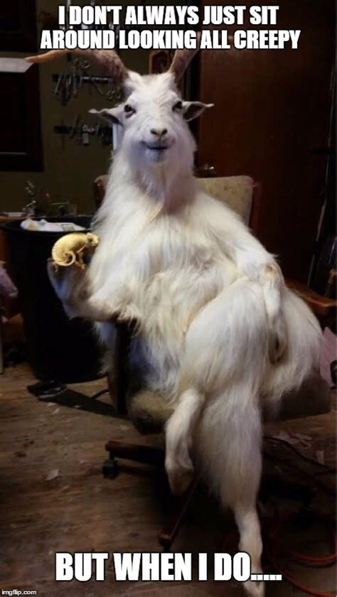 Billy Goat Meme - goat imgflip