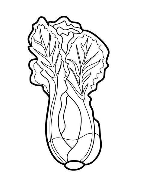lettuce leaf coloring page pin lettuce colouring pages on pinterest