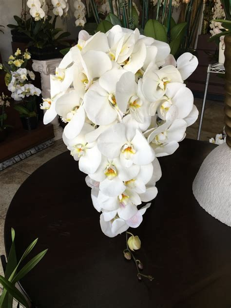 Orchid Wedding Bouquet by White Phalaenopsis Orchid Cascading Wedding Bouquet Occasion