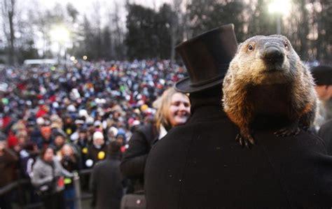groundhog day celebration why do we celebrate groundhog day