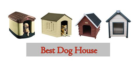 top 10 best house dogs best house pets 28 images bob vila s quot best in show quot doghouse contest bob s