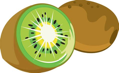 artwork clipart kiwi clipart the cliparts