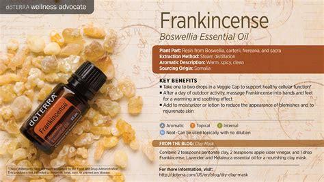 Essential Frankincese Frankincense Doterra Essential Oils