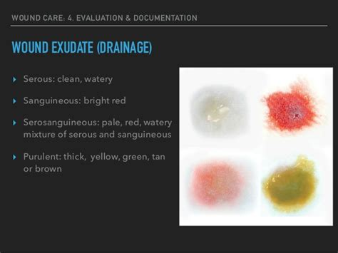 serous drainage color wound care