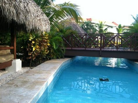 Up Pool Bed by Pool Bed Our Swim Up Suite Picture Of The