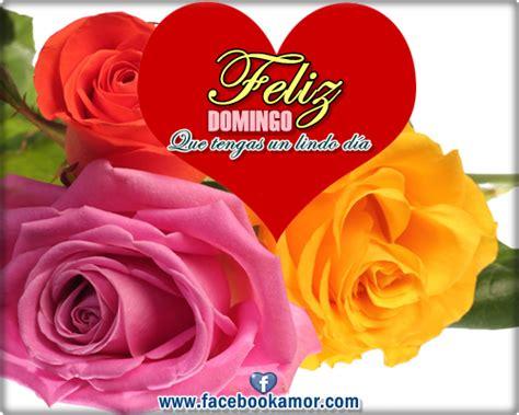 imágenes hermosas de feliz cumpleaños para una amiga imagenes de feliz domingo miexsistir
