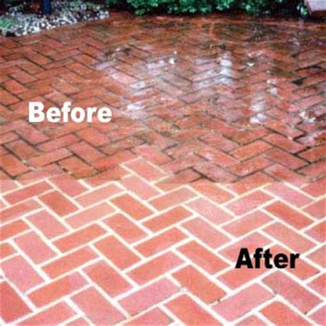 Concrete Mold Patio Why Your Home Needs A Power Wash Before And After Pics