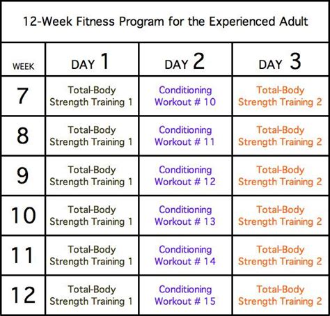 bodyweight strength 12 weeks to build and burn books 1 week strength workout plan sport fatare