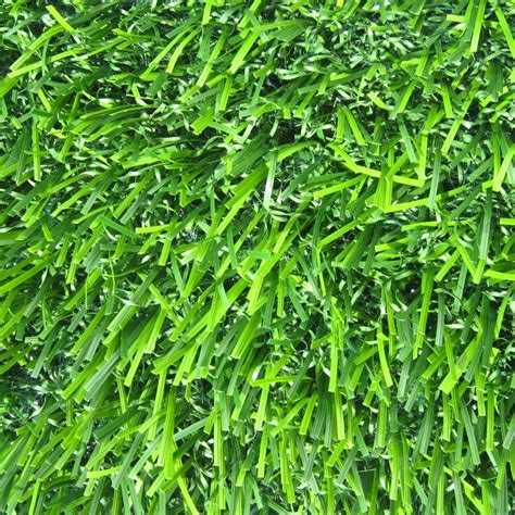 triyae grass for backyard home depot various