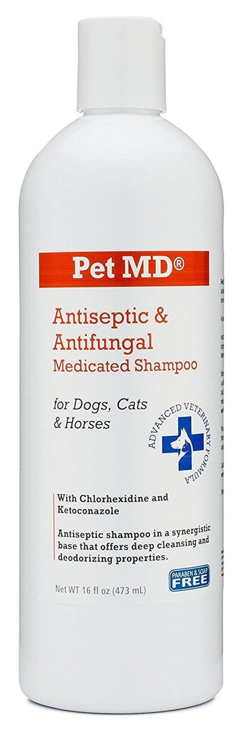 antifungal shoo for dogs 1000 ideas about antifungal medication on adjustable beds butterfly