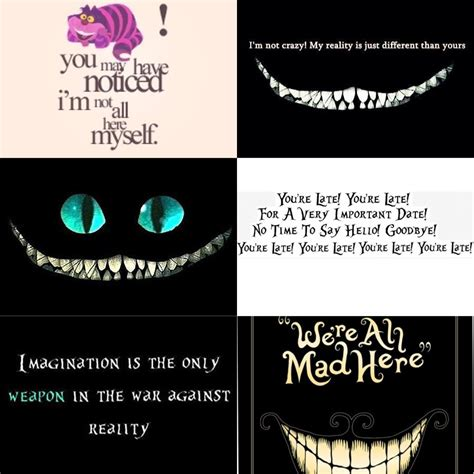 cheshire cat tattoo quotes quotes from the cheshire cat quotesgram