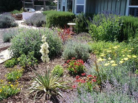 Drought Tolerant Landscape Design Of Herbs Home Ideas Drought Tolerant Garden Design