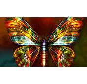 Neon Gold Butterfly Wallpaper 11029  Cool Walldiskpaper
