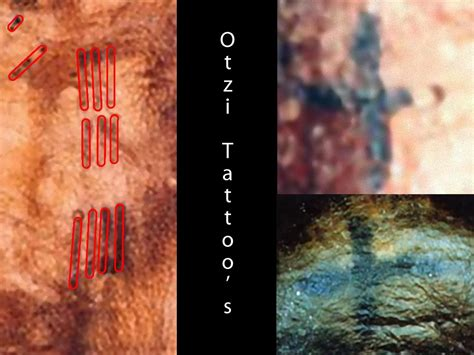 otzi tattoo otzi