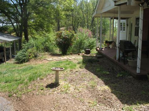 backyard workshop tea time with mother nature diy backyard workshop