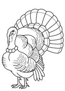 turkey feather coloring page coloring home