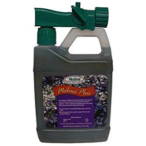 patio plus soil medina plus soil activator 1000 sq ft