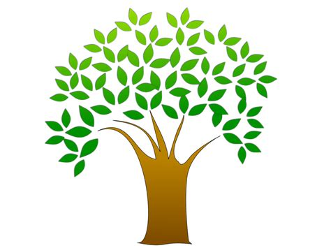 7 Tips On Tracing Your Family Tree by How To Start Tracing Your Family Tree R Claywell