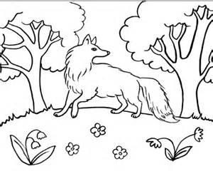 disegno lupo da colorare lupo nel bosco da colorare fattoria didattica provincia bologna