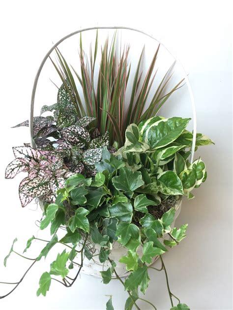 Emerald Garden Basket by Emerald Garden Plant Basket From The Fresh Flower Market