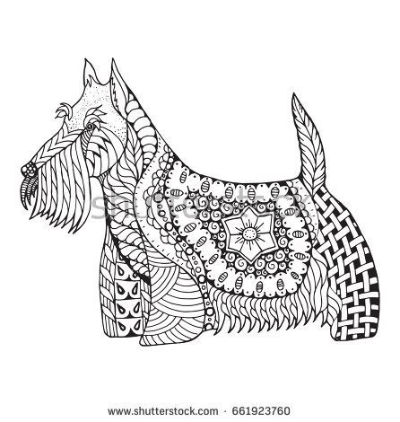 scottie dog coloring page boxer dog zentangle stylized vector illustration stock