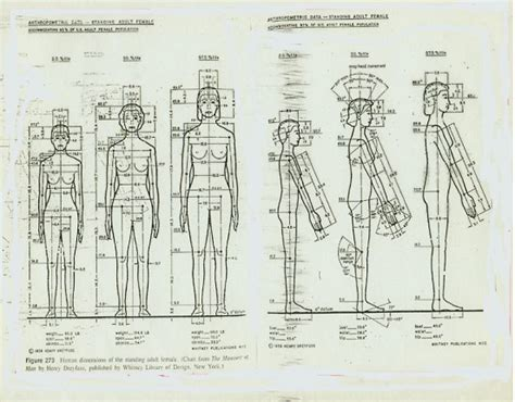 pengertian layout posisi tetap pengertian ergonomi dan ruang lingkupnnya info dan