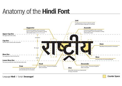 hindi font design online infographic digest typography edition infografical