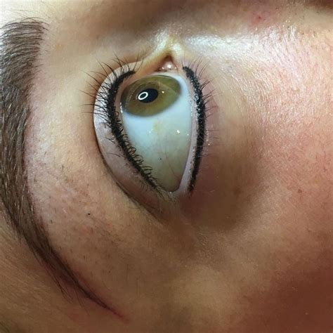 tattoo eyeliner infection 529 best images about beauty health on pinterest wolf