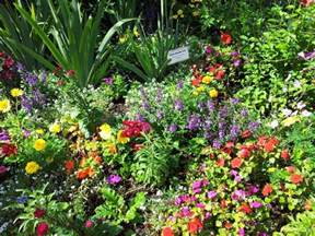 Flowers For Butterfly Garden Container Garden Ideas Inspired By Epcot Center Go