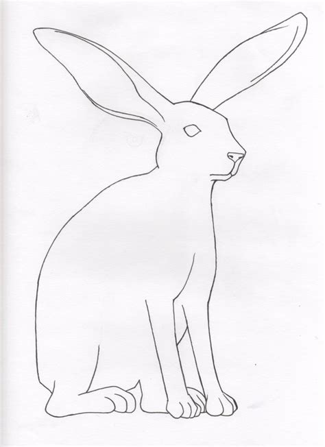 coloring pages jack rabbit image gallery jack rabbit drawing