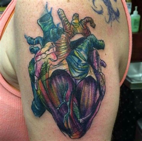 watercolor tattoo indiana watercolor anatomical by branden martin at