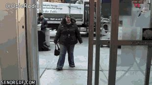 Cat Hits Glass Door 24 Epic Walking Through The Glass Door Fail Gifs The