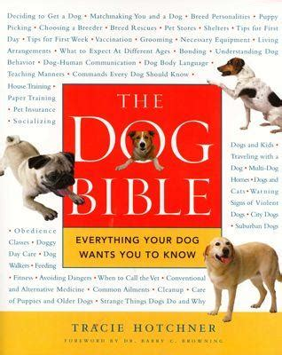 dogs in the bible the bible with tracie hotchner
