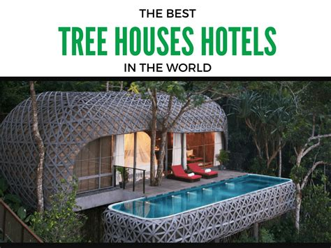 coolest treehouse in the world top 6 amazing tree house hotels that will make you fall