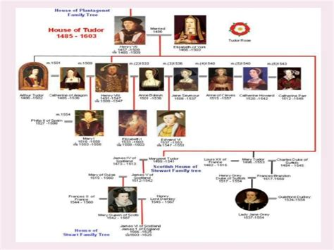 house of tudor pp the tudor dynasty