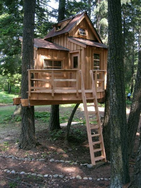 Backyard Treehouse Ideas Best 25 Treehouses For Ideas On Pinterest Treehouse Backyard Treehouse And