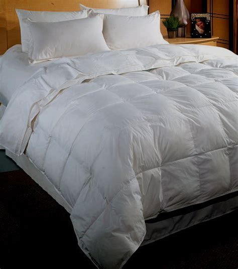 100 Goose Comforter by Goose 500 Thread Count 100