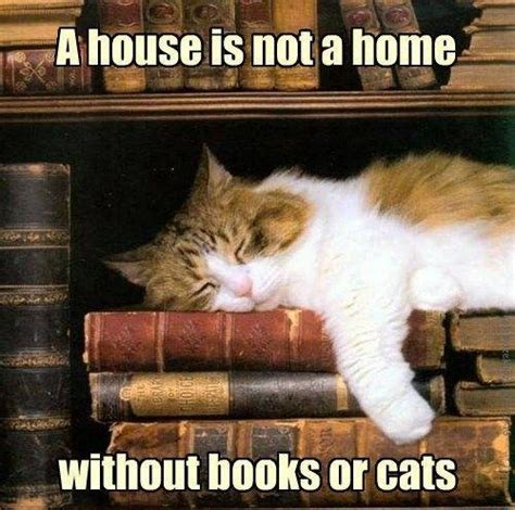a house is not a home without books or cats picture quotes