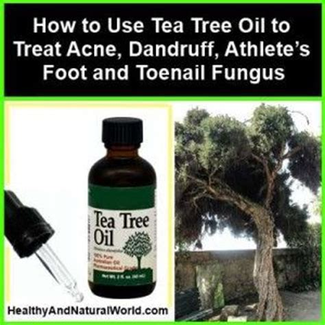tea tree oil after popping head on ingrown hair 23 best images about tea tree oil scalp treatments on