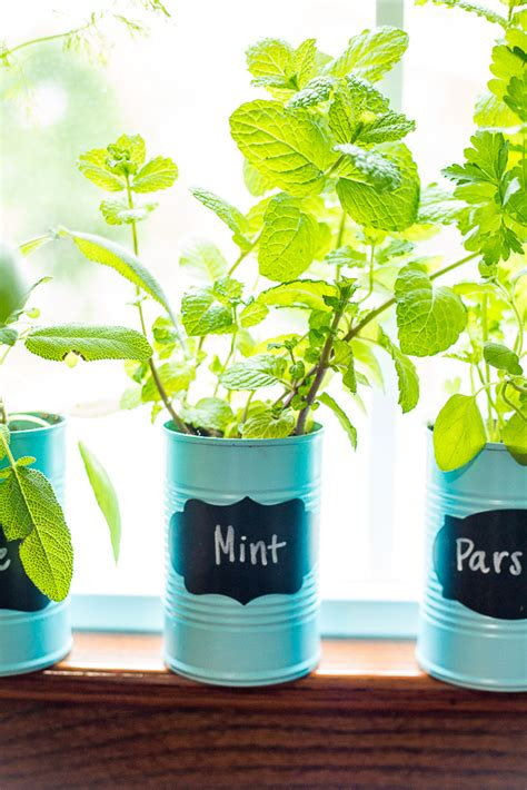 how to make an indoor herb garden how to make an indoor window sill herb garden