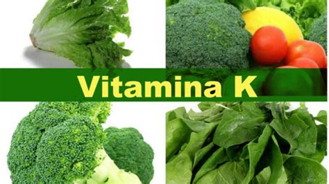 alimentos que contengan vitamina k alimentos ricos en vitamina k estos alimentos estan