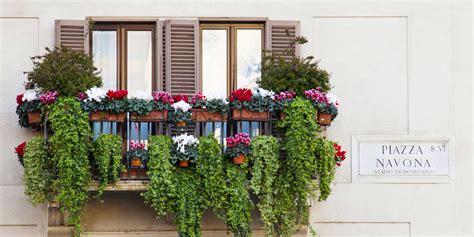 fiori per terrazzo 10 fiori profumatissimi per colorare il tuo terrazzo