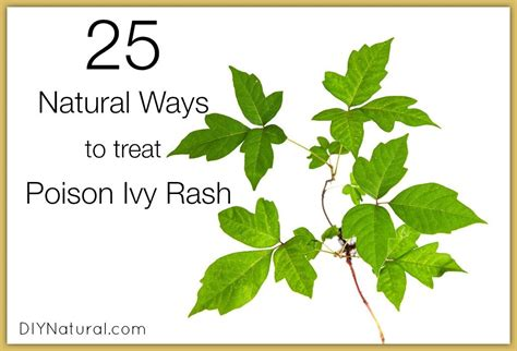 how long does it take to get nc boating license poison ivy treatment along with 25 other natural rash
