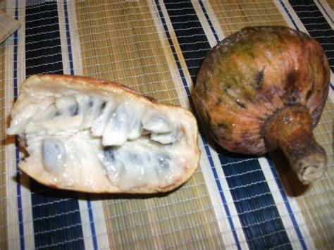 rare anonas fruit custard apple   marikina market